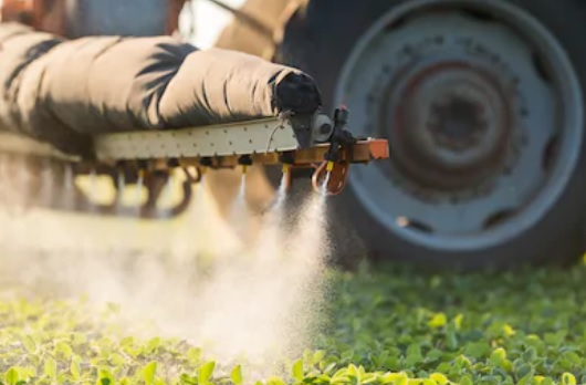 Pour des solutions alternatives aux pesticides chimiques !