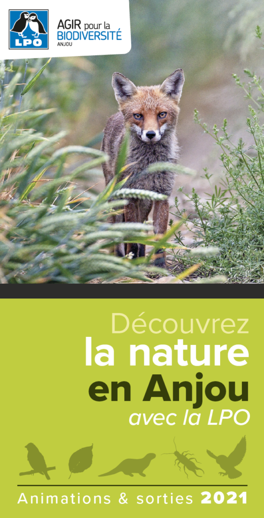 Programme 2021 de la LPO Anjou